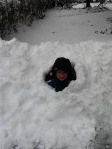 We asked, you delivered - Your Snow Day Photos